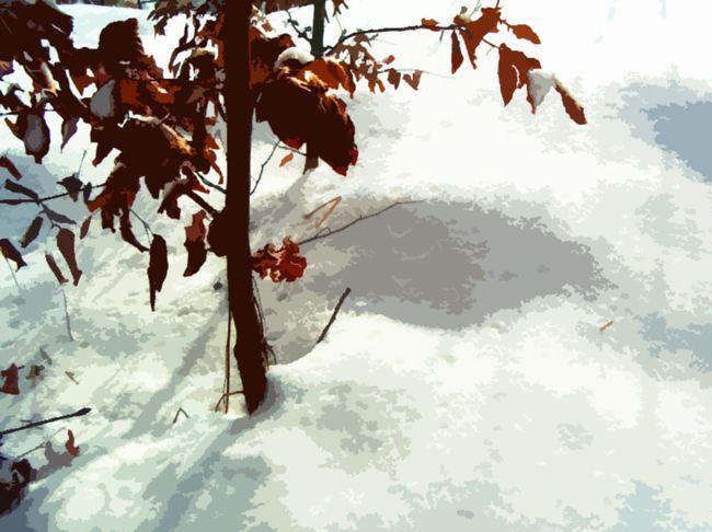 Topographie de la Terreur - Terrain vague enneigé